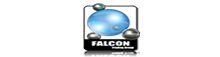 Falcon Trading Group